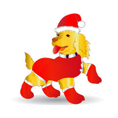 Yellow Dog,symbol of the year, in the Santa Claus hat, cartoon, on white background,