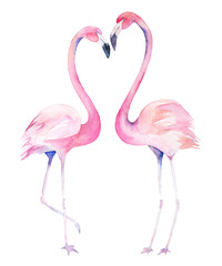Valentines watercolor flamingos. Isolated hand drawn illustration. Couple birds