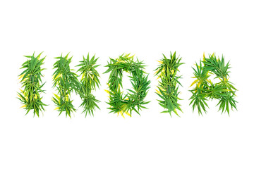 Word INDIA made from green cannabis leaves on a white background. Isolated