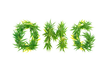 Word OMG made from green cannabis leaves on a white background. Isolated