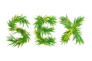 Word SEX made from green cannabis leaves on a white background. Isolated