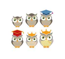 Cartoon owl character collection. Vector illustration.