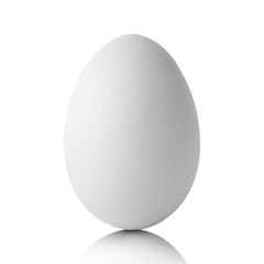 Single  white egg isolated on white and shadow with clipping path
