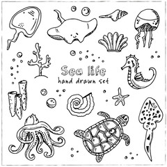 Hand drawn doodle sea life set.