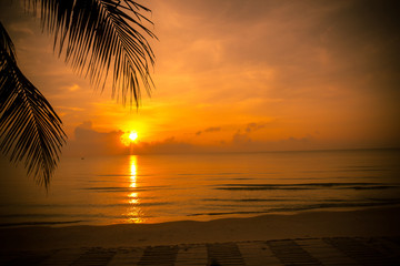 Golden sun set in tropical hot summer beach with palm leaf in foreground in thailand, golden special effect.