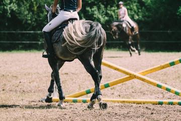 Tuinposter Paardrijden Springpferd