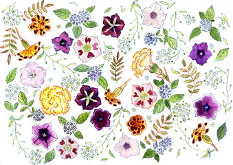 Flowers and herbs watercolor