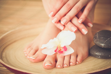 Care for beautiful woman legs with flower . Beautiful woman legs