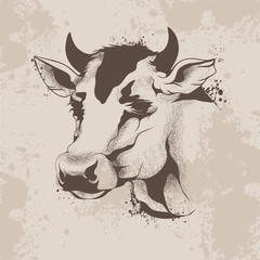 graphic ink drawing, sketch the head of a cow