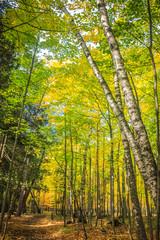 Scenic Drive in Fall near Door County Wisonsin