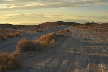 Early morning light off-road desert landscape