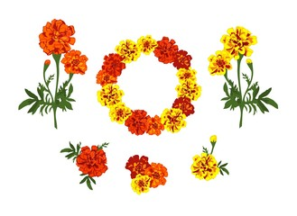 Collection marigold yellow and red flowers wreath and bouquets isolated on white background