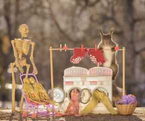 skeleton and red squirrel with washing machine