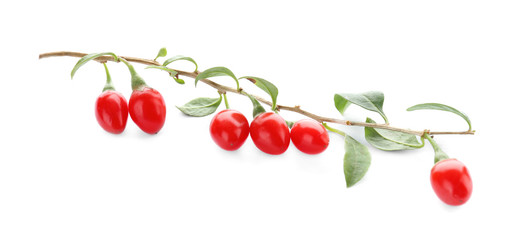 Twig with goji berries on white background