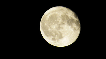 Bright Almost Full-Moon with many craters in a dark sky.