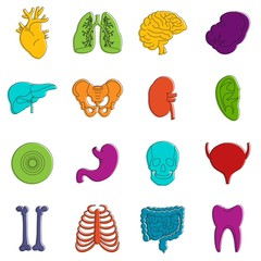 Human organs icons doodle set