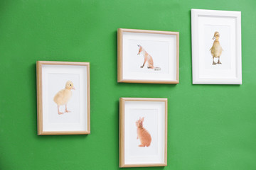 Pictures of different baby animals on wall
