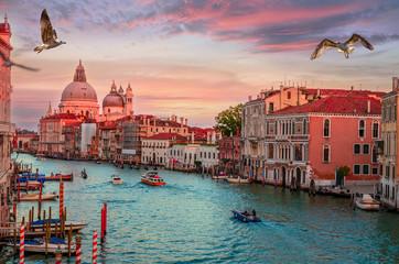 Cityscape view on Santa Maria della Salute basilica in sunset in Venice, Italy