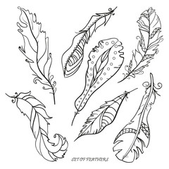 Feathers. Print for polygraphy. Zentangle. Hand drawn feathers with patterns on isolation background. Design for spiritual relaxation for adults. Black and white illustration for coloring. Decorative
