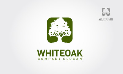 A simple white oak tree silhouette on green background. Modern vector sign. Premium quality illustration logo design concept.
