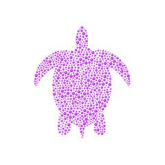 Turtle in purple design