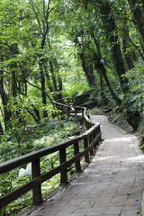 beauty in Taiwan