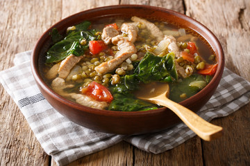Philippine mung beans soup with pork closeup in a bowl. horizontal