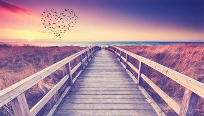 Vogelschwarm am Meer in Herzform