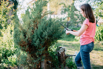 Young woman trimming the bush in the garden