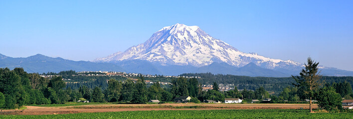 Mt Rainier, Washington Wall mural