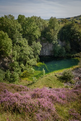 Old abandoned quarry with green algae grown pond and purple heath foreground