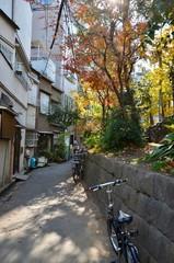 日本 東京スカイツリー Japan tokyo SKYTREE