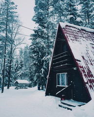 Picture of little house in winter forest, covered with much snow. Beautiful winter landscape of countryside. House of wood goblin. Outdoor view and nice scenes