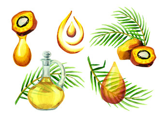 Palm oil simbols set. Watercolor hand drawn illustration