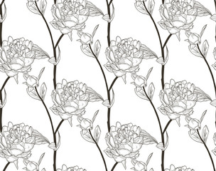 Vector Black Seamless Pattern with Drawn Flowers, Peony