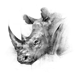 face painted rhinoceros animal on white background