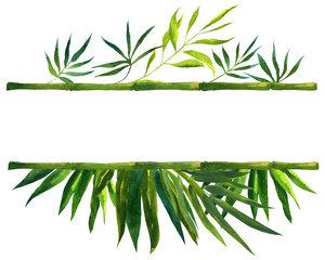 bamboo frame made of stems watercolor