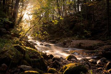 River sunlight