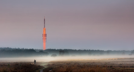 Tower in the sunrise