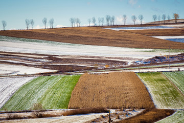 frost and early snow on colorful fields