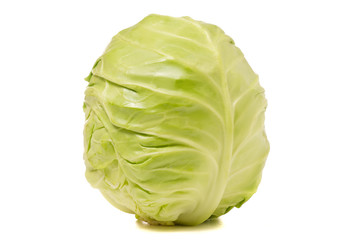 Cabbage cabbage isolated