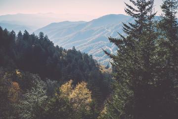 Landscape of Smoky Mountains National Park