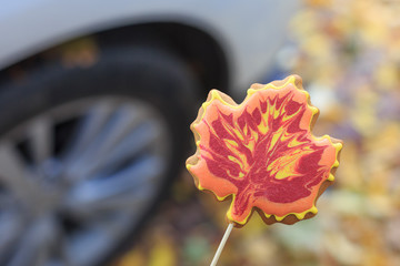 Tasty handmade cookie in the form of a maple leaf on the background of a car wheel on the street in the fall