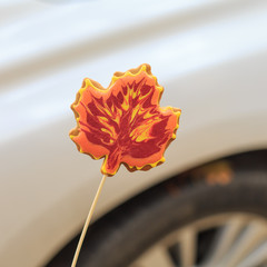 Delicious handmade cookie in the form of a maple leaf on the background of a car