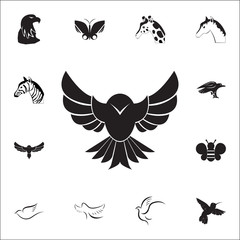 Hawk icon. Set of animal icons. You can use in web or app icons