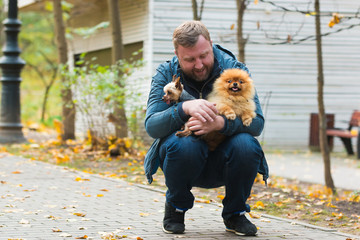 Serious man with pomeranian and terrier in autumn park