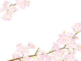 桜 フレーム