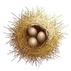 Vector birds nest with eggs. Top view