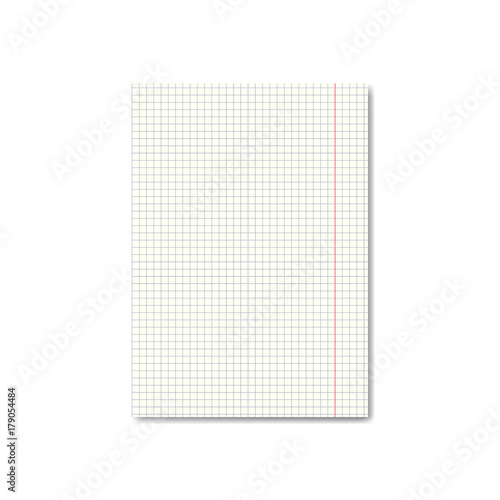 vector realistic quadrille or graph paper sheet with margins