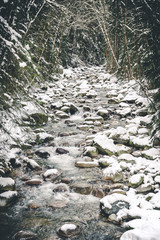 Winter Snow on Riverbed Rocks in Hallway of Forest Trees
